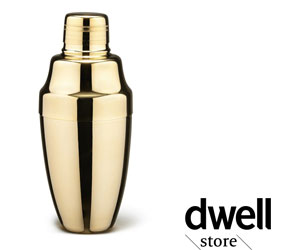 Dwell Martini Shaker