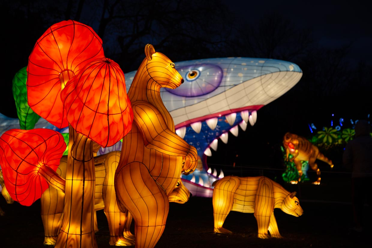 Lighted animals at the NYC Winter Lantern Festival at Snug Harbor