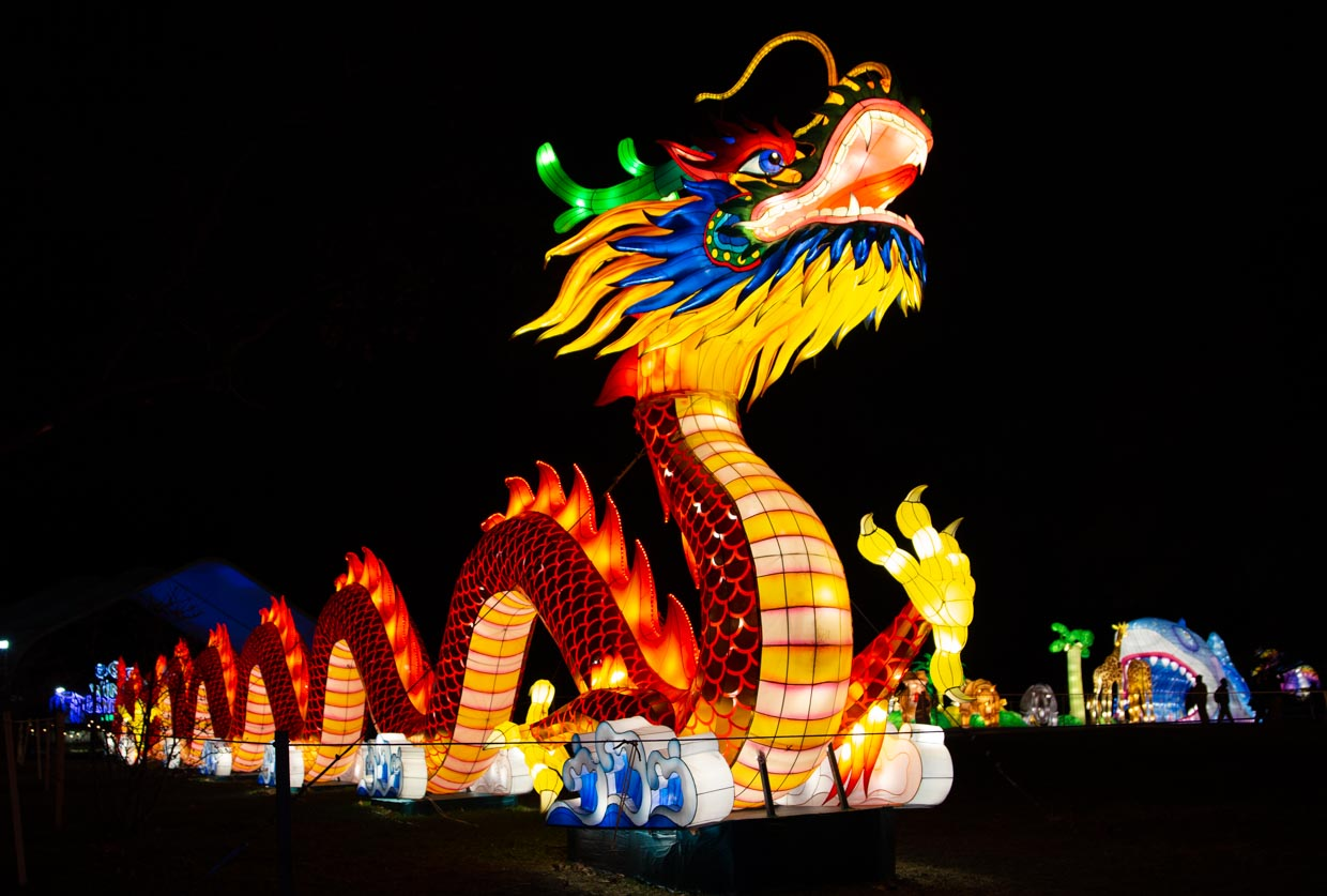 Lighted dragon at the NYC Winter Lantern Festival