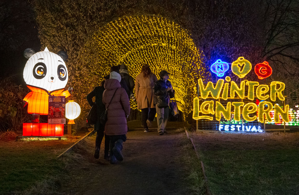 NYC Winter Lantern Festival at Snug Harbor