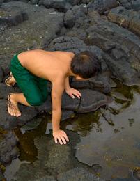 Lava on black sand beach, Hawaii - Photo by Jones Studio